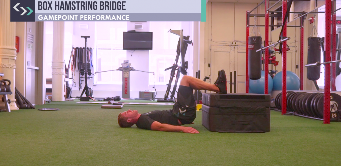 Box Hamstring Bridge
